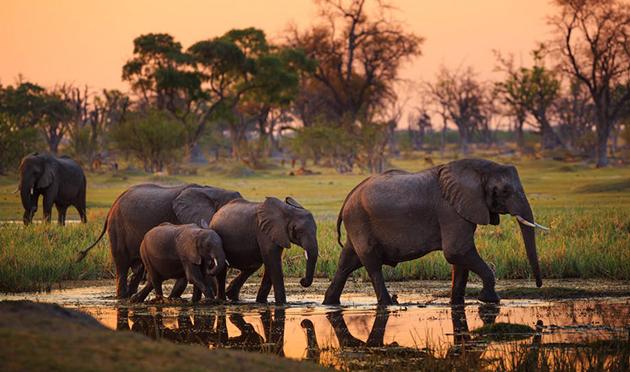 KENIA:  MEMORIAS DE ÁFRICA (DEL 20 AL 29 SEPTIEMBRE 2020)