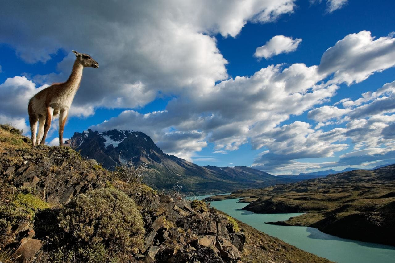 Programa Viajeros de Localia Vigo dedicado a Chile.